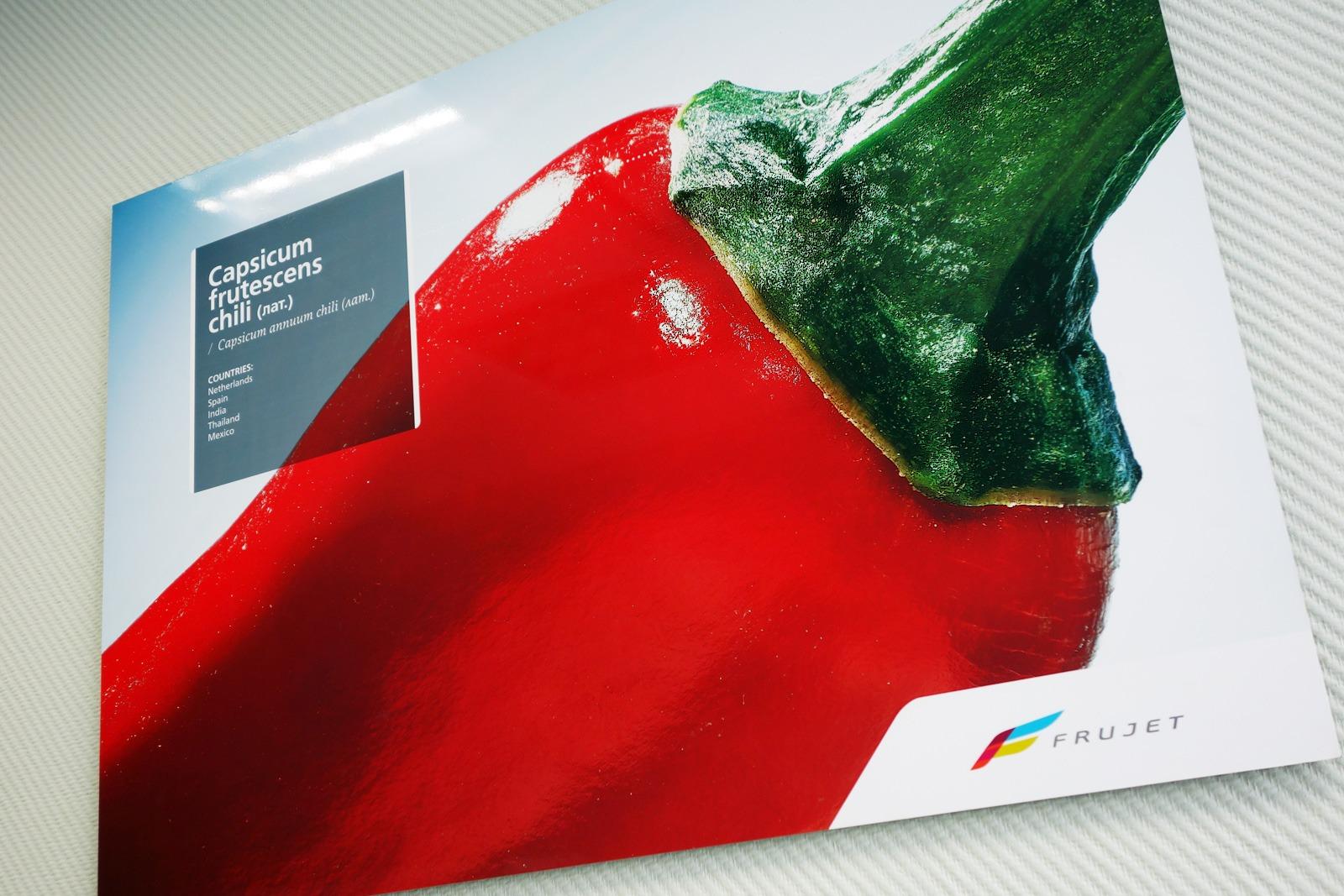 Asgard Branding, Frujet company brand identity, logo, брендинг в интерьере