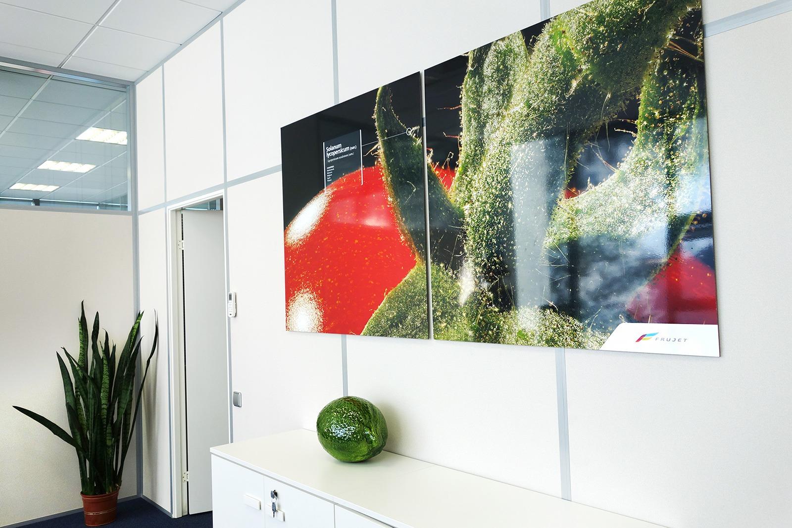 Агентство Асгард, фирменный стиль Frujet, брендирование интерьера, corporate interior