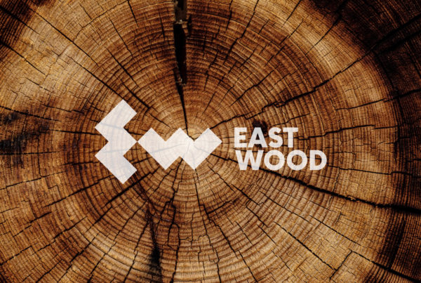 Asgard Branding, corporate identity, rebranding, Eastwood, logo, design, banner design, wood, timber